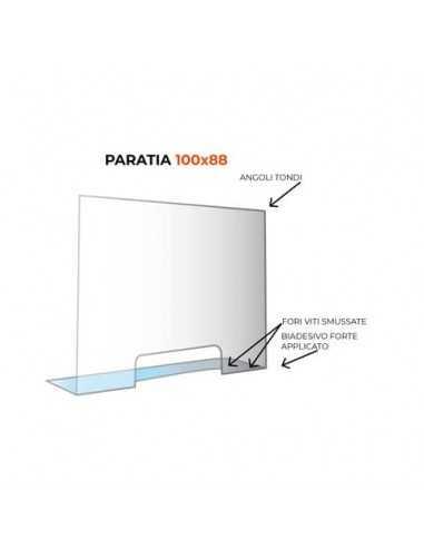 Paratia formato 100x88 cm policarbonato trasparente 05N01935395650